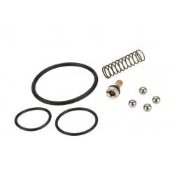 kit reparation taginn pour shell/pro/multi-R