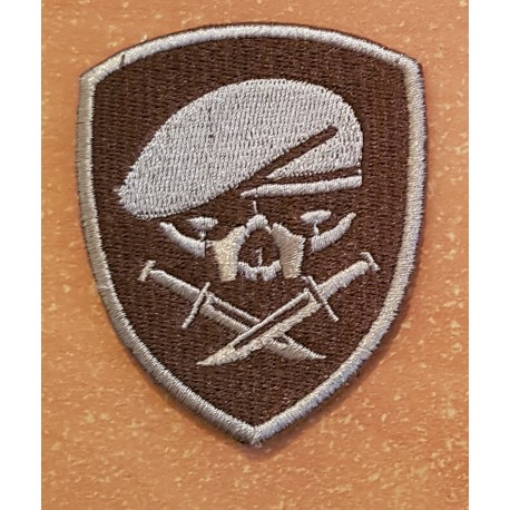 patch medal of honor MOH 75th ranger 1st bataillon tan beret