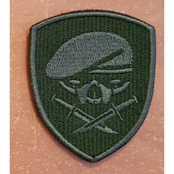patch medal of honor MOH 75th ranger 1st bataillon od beret